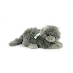 soft-grey-cat