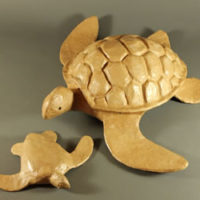 Biodegradable Paper Turtles
