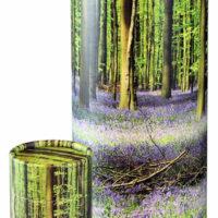 Scattering Tube Bluebell Forest