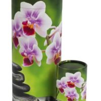 Scattering Tube Orchid
